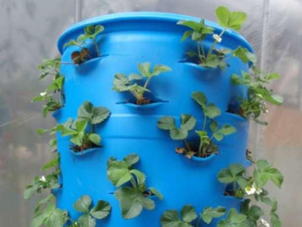 Δημιουργήστε έναν ολοκληρο κήπο σε μόλις 1 τετραγωνικό μέτρο!!!