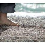 Το νόημα της ζωής είναι οι μικρές απολαύσεις (βίντεο)