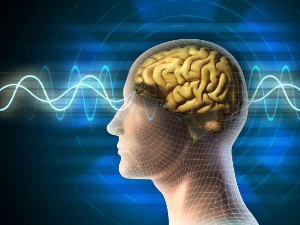 νους εγκέφαλος σώμα