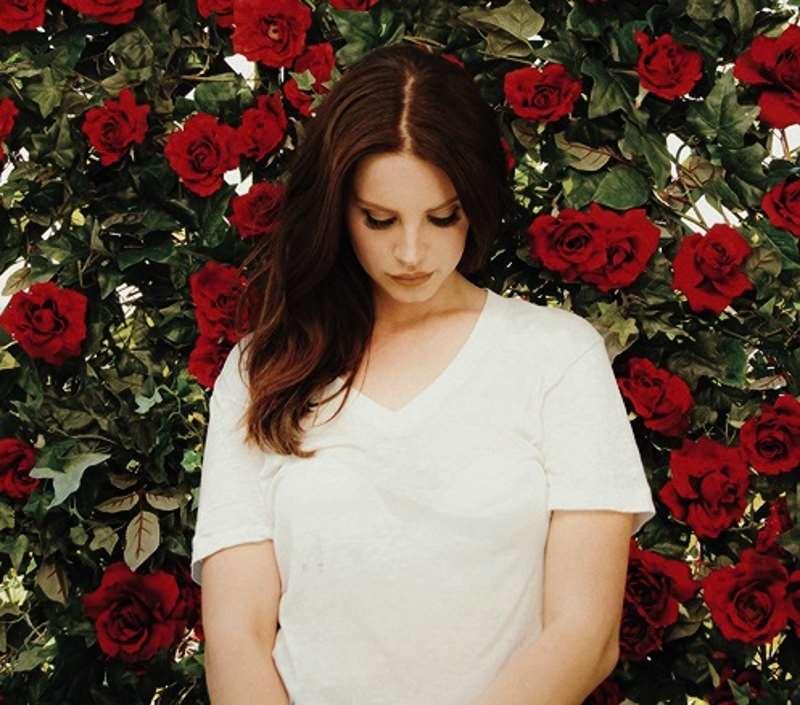 Το κόκκινο τριαντάφυλλο που ήθελε να γίνει λευκό