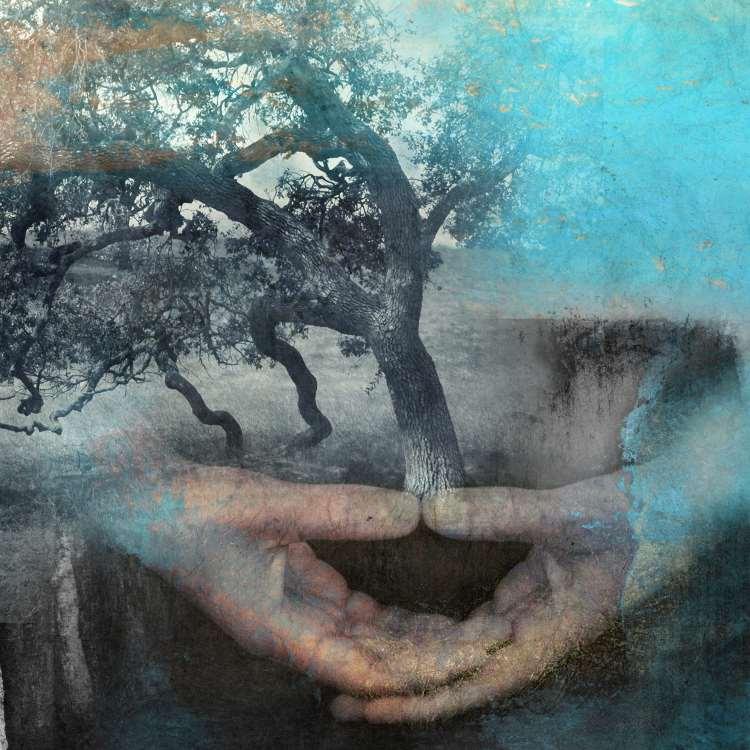 Θεόφραστος Παράκελσος: Ο γιατρός γεννιέται από τη Φύση