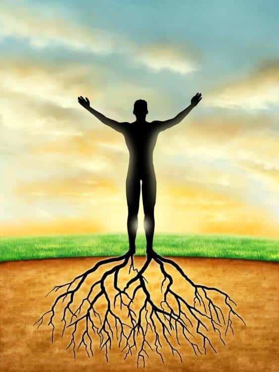 Η έννοια της Υγείας, της Ασθένειας και της Θεραπείας στην Εναλλακτική Ιατρική