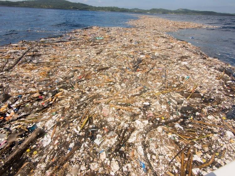 http://enallaktikidrasi.com/2017/11/thalassa-plastikon-sokaristikes-eikones-anthropini-paremvasi-karaiviki/