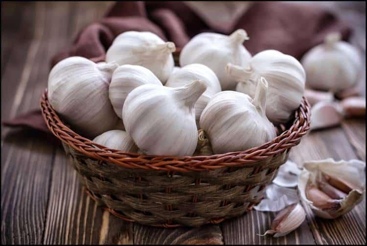 Σκόρδο: Θεραπευτικές ιδιότητες και τρόποι χρήσης