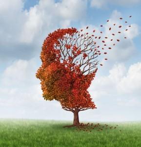 Το σαφράν καταπολεμά το Αλτσχάιμερ
