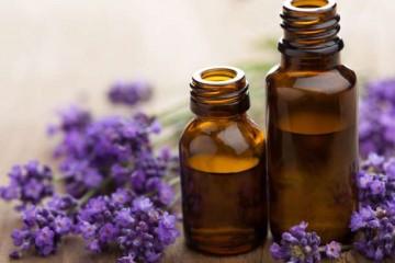 Εναλλακτική Δράση Συνταγές σπιτικών εντομοαπωθητικών με αιθέρια έλαια