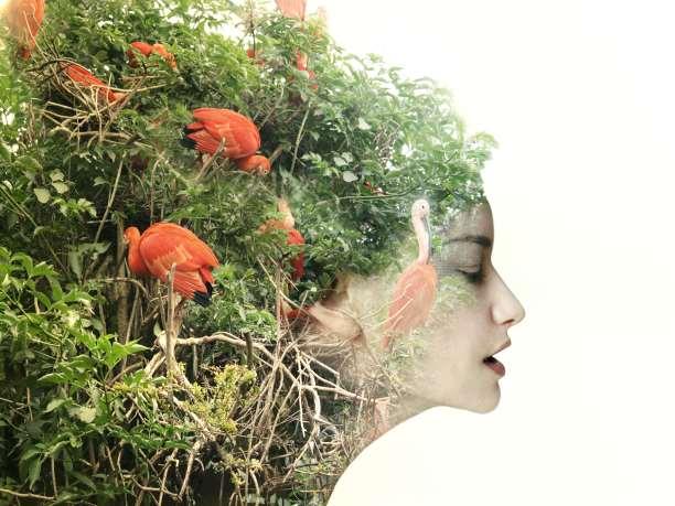 Elizabeth Ann Morris: Τα 4 βήματα για την Eπανένωση με τη Χαρά