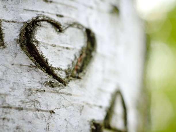 Περιμένοντας να μιλήσει η καρδιά σου