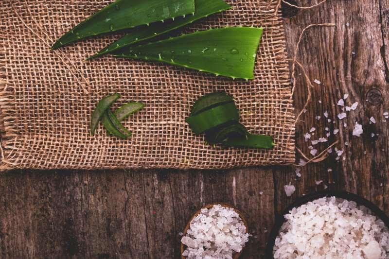Αλόη: Όλες οι θεραπευτικές ιδιότητες και χρήσεις σε ένα άρθρο