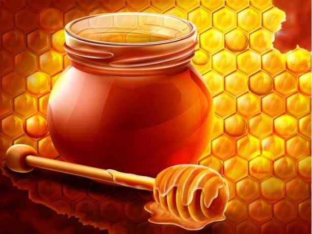 συνταγές μέλι