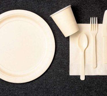 Η Γαλλία απαγορεύει τη χρήση πλαστικών πιάτων και μαχαιροπήρουνων