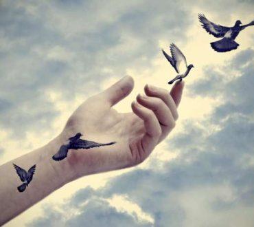 Αφήνοντας τα φτερά σου να σε οδηγήσουν