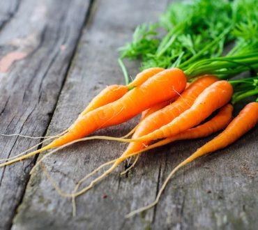 Πώς να φυτέψετε καρότα σε γλάστρα (Βίντεο)