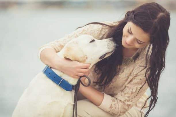 Πώς καταπολέμησα την κατάθλιψη και το άγχος υιοθετώντας ένα σκύλο