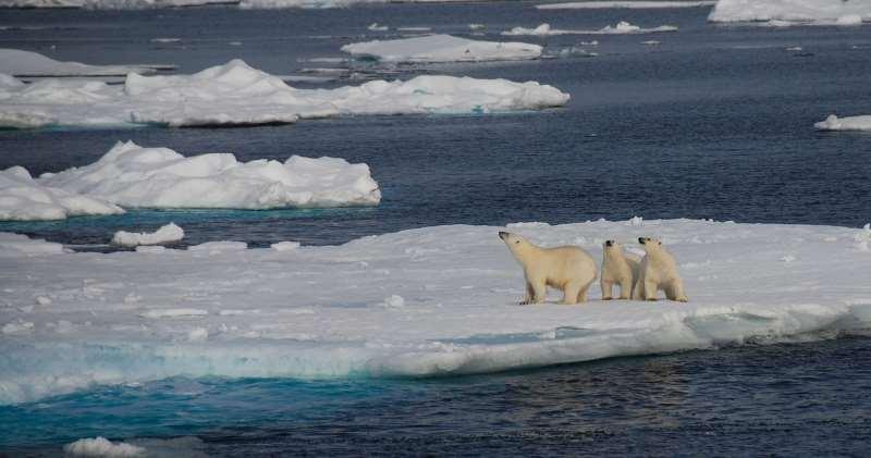 NASA: Η δραματική μείωση του πάγου της Αρκτικής από το 1984 έως σήμερα (Βίντεο)