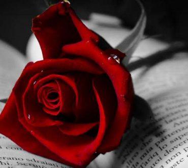 Αγάπη το οξυγόνο της ψυχής