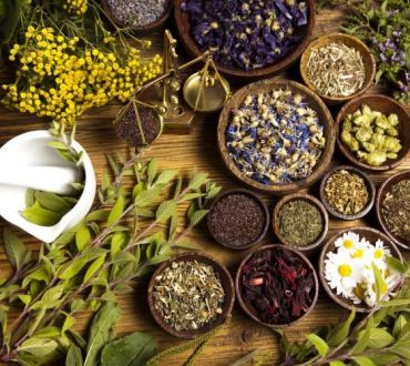 Φυτοθεραπεία: Η ανυπέρβλητη δύναμη των θεραπευτικών φυτών