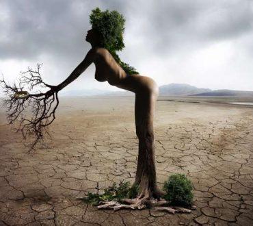 Ποίηση: «Απελπισία - Ελπίδα»