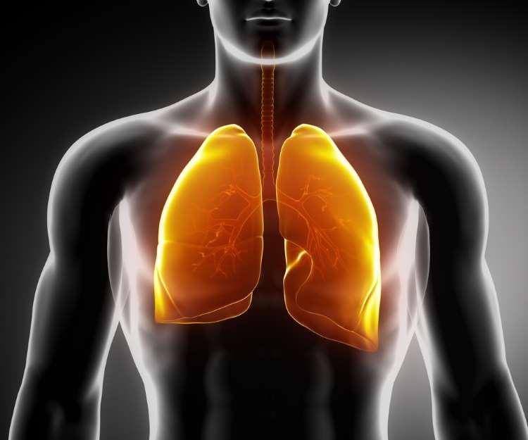 Συνταγή: Φυσική αντιμετώπιση των λοιμώξεων του αναπνευστικού και καθαρισμός των πνευμόνων