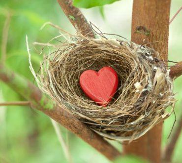 Η αγάπη θεραπεύει, δεν ψάχνει φταίχτες