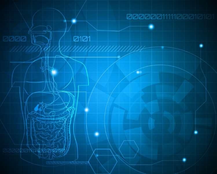 6 πράγματα που χρειάζεται να γνωρίζετε για το πεπτικό σας σύστημα