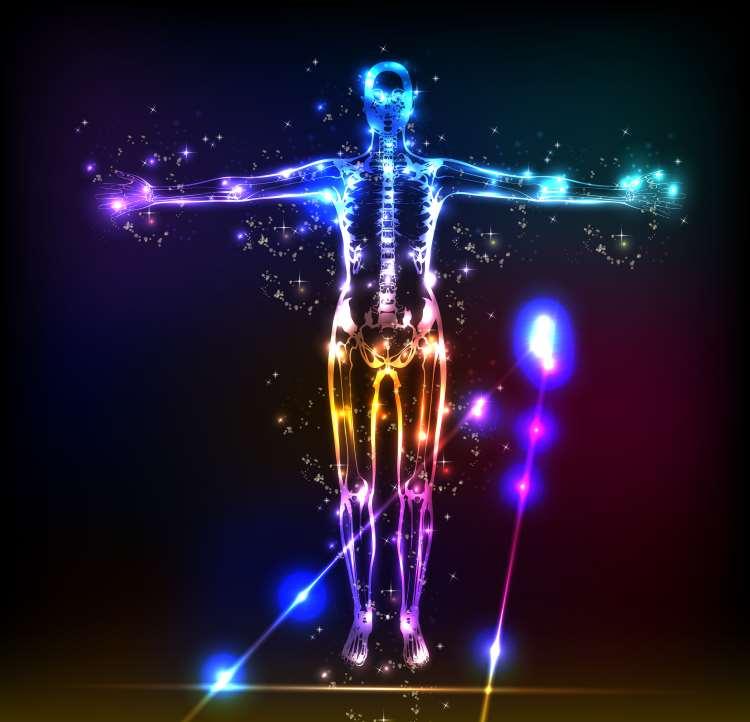 e94f01979d Τα τρία σώματα του ανθρώπου - Εναλλακτική Δράση