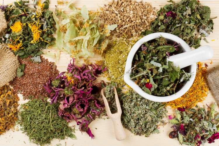 Ανακατασκευή 12 βότανα που θα σας βοηθήσουν να συνέλθετε από τις καταχρήσεις