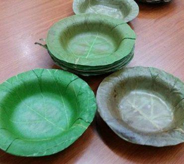 Πιάτα από φύλλα αντικαθιστούν το πλαστικό και το φελιζόλ