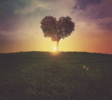 Έριχ Φρομ: Η Καρδιά του Ανθρώπου