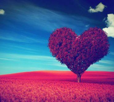 Ένα Θαύμα η Καρδιά σου
