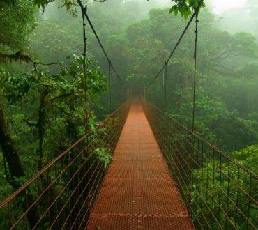 Η θυσία είναι γέφυρα ζωής!