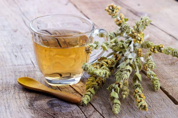 Τσάι του βουνού: Θεραπευτικές ιδιότητες και τρόποι χρήσης