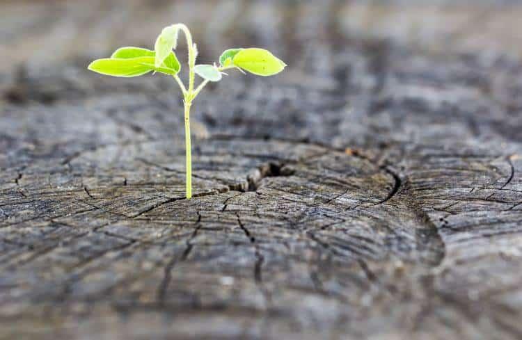 Στη ζωή δεν πρέπει να υπάρχει παραίτηση, αλλά… απαίτηση για ένα καλύτερο αύριο