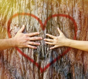Ένα απλό άγγιγμα, είναι σημάδι της δύναμης του ανθρώπου να εκφράσει τα συναισθήματά του