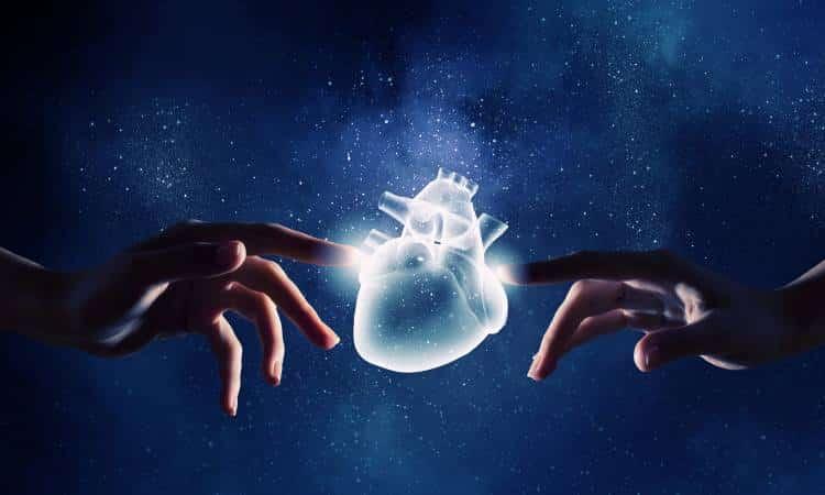 Επιστήμονες δημιούργησαν καρδιακό μυ από ανάπτυξη βλαστοκυττάρων