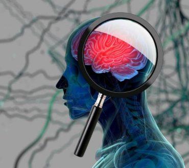 Νέα στοιχεία υποστηρίζουν πως τα κύτταρα στον εγκέφαλο των ατόμων με αυτισμό αναπτύσσονται διαφορετικά