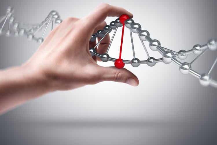 Το ανθρώπινο γονιδίωμα είναι το σενάριο της ζωής μας