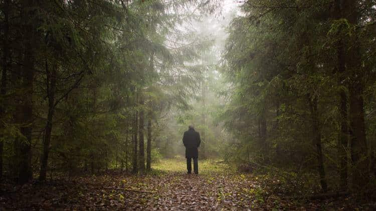 Δώσε δύναμη σε αυτόν που έχασε το δρόμο του, έστω μια πυξίδα να κοιτάξει...