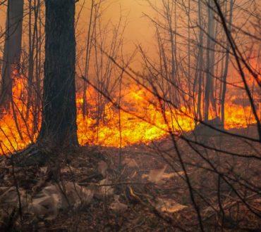 Οδηγίες προστασίας σε περίπτωση πυρκαγιάς