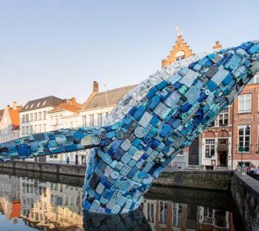 5 τόνοι πλαστικών αποβλήτων μεταμορφώνονται σε αναδυόμενη φάλαινα 12 μέτρων στη Μπρυζ του Βελγίου