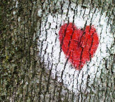 Ν' ακούς τη φωνή της καρδιάς σου