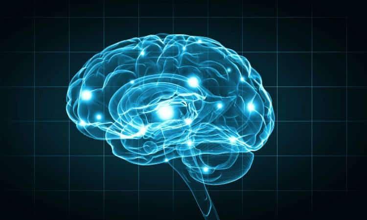 Ποιες αλλαγές συντελούνται στον εγκέφαλό μας όταν γκρινιάζουμε συνέχεια;