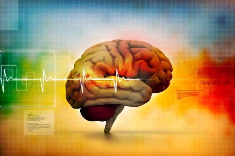Υγεία και Φυσιολογία: Η βιολογική αξία των δύο εννοιών