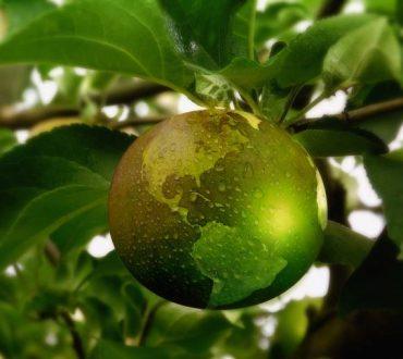 Αειφορία: Μία διατροφική τάση που προστατεύει τη βιωσιμότητα του περιβάλλοντος