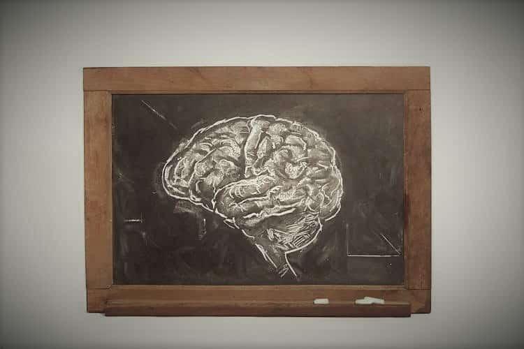 Τα υψηλά επίπεδα στρες αποδυναμώνουν τη μνήμη