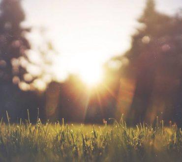 Κάθε εμπόδιο, κάθε αγκάθι είναι ακόμα ένα λιθαράκι για το δρόμο που οδηγεί στην ευτυχία