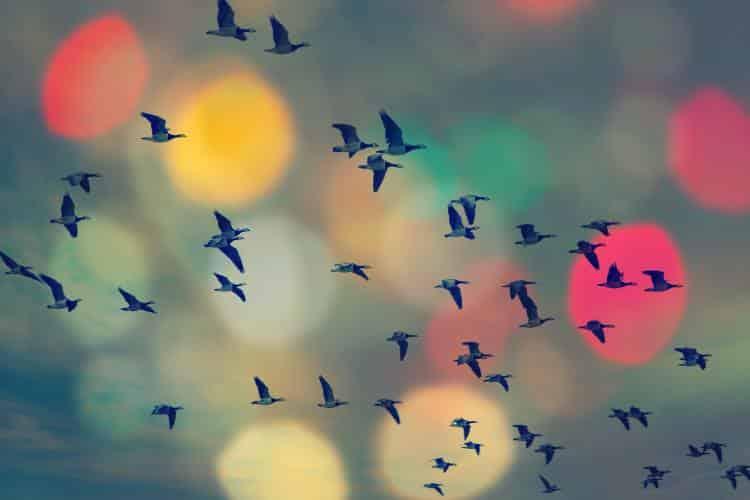 Φτάνουμε τόσο ψηλά όσο επιτρέπουμε στις σκέψεις μας!