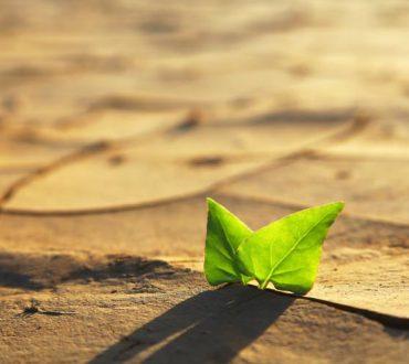 Μην γίνεις φόβος της αλλαγής, γίνε η δυνατότητά της