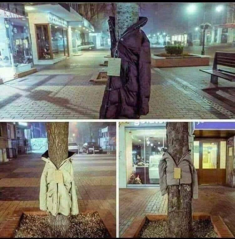 Λάρισα: Ντύνουν τα δέντρα με μπουφάν για καλό σκοπό