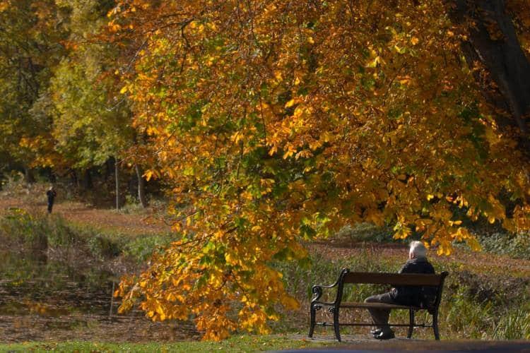 Η μοναξιά συνδέεται με υψηλότερο κίνδυνο εμφάνισης άνοιας